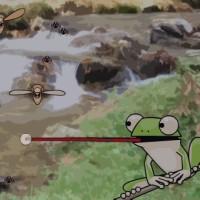 Bug Hunt.jpg