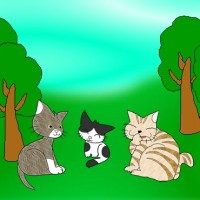 Three Little Cats.jpg