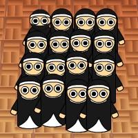 ninja or nun.jpg