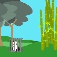 Free The Pandas.jpg