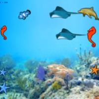 Gold Fish Game.jpg