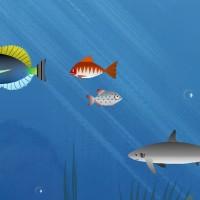 Hungry Piranha.jpg