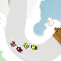 Husky Racers.jpg