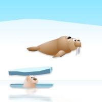 Ice Slide.jpg