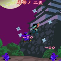Ninja Ninja.jpg