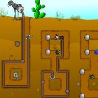 Ostrich Underground.jpg