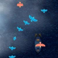 Wings Over Water.jpg