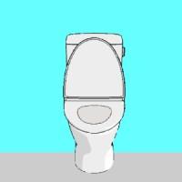 toiletesc.jpg